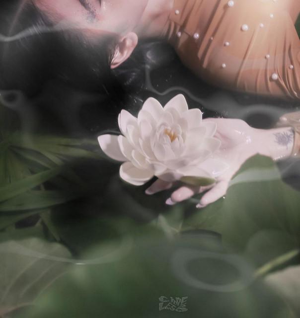 Artist Nadine Lustre Cover